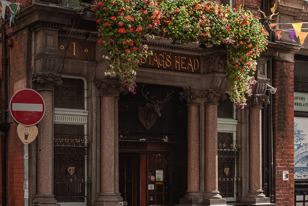 Stag's Head pub in Dublin